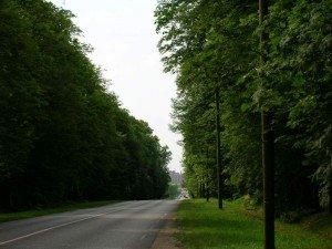 Escapade au temps des rois dans Cancer du rein Avenue-des-Loges-300x225